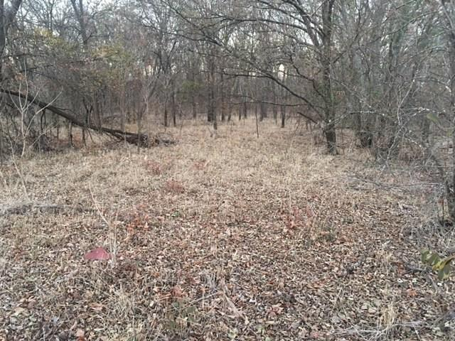 gibson Gibson Road, Waxahachie, TX 75165 (MLS #13745648) :: Team Tiller