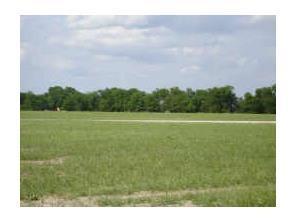 tbd Meadow Circle, Lone Oak, TX 75453 (MLS #13755320) :: The Paula Jones Team | RE/MAX of Abilene