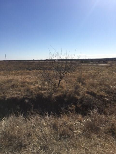 Lot 97 Night Hawk Drive, Possum Kingdom Lake, TX 76449 (MLS #13766953) :: Team Hodnett