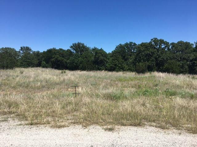 Lot 38 Paloma Court, Glen Rose, TX 76043 (MLS #13776846) :: Robinson Clay Team