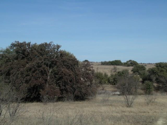 000 Cr 238, Comanche, TX 76442 (MLS #13778341) :: Team Hodnett