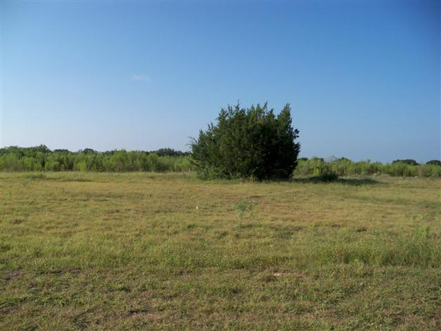 #TBD Switzer Avenue, Bangs, TX 76823 (MLS #13781839) :: HergGroup Dallas-Fort Worth