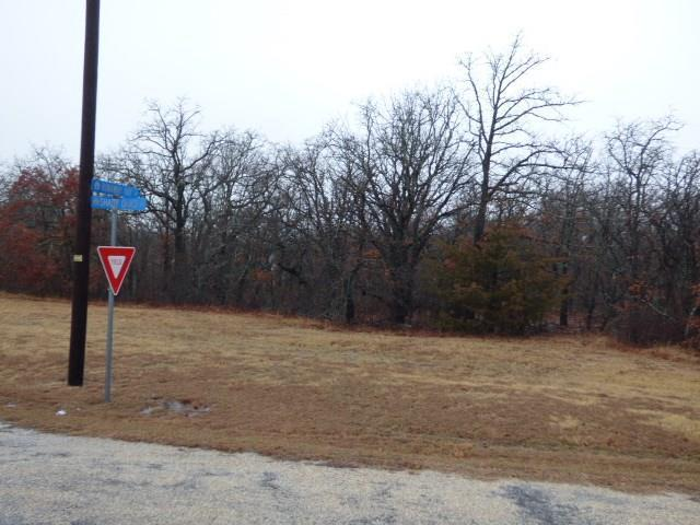 Lot 48 Runaway Bay Drive, Runaway Bay, TX 76426 (MLS #13782451) :: Team Hodnett