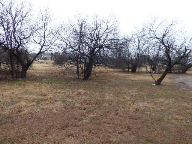 2 Lot Lakeshore Drive, Runaway Bay, TX 76426 (MLS #13782466) :: Team Hodnett