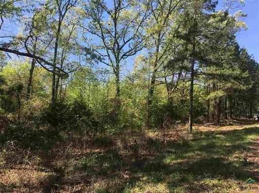 000 County Road 2220, Whitehouse, TX 75791 (MLS #13799255) :: Robinson Clay