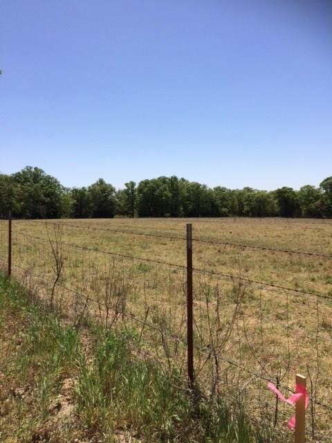 127 County Road 1591, Alvord, TX 76225 (MLS #13821434) :: The Chad Smith Team