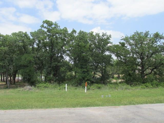 121 Lakeside Drive, Lipan, TX 76462 (MLS #13841424) :: Frankie Arthur Real Estate