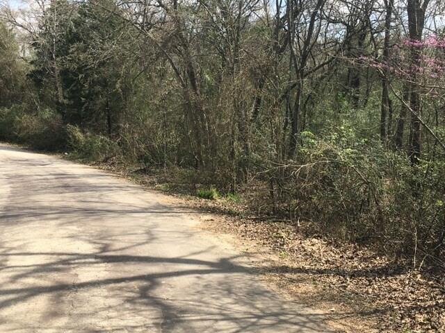228 Oak Hills Drive, Mabank, TX 75156 (MLS #13847894) :: The Heyl Group at Keller Williams