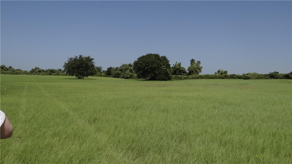 Lot 24 County Rd 2027 - Photo 1