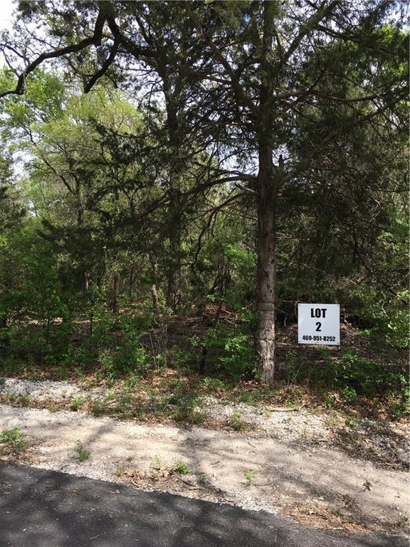 Lot 2 Welch School Road, Collinsville, TX 76233 (MLS #13862692) :: The Real Estate Station