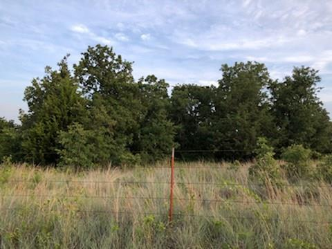1427 County Road 3540, Paradise, TX 76073 (MLS #13865994) :: The Kimberly Davis Group