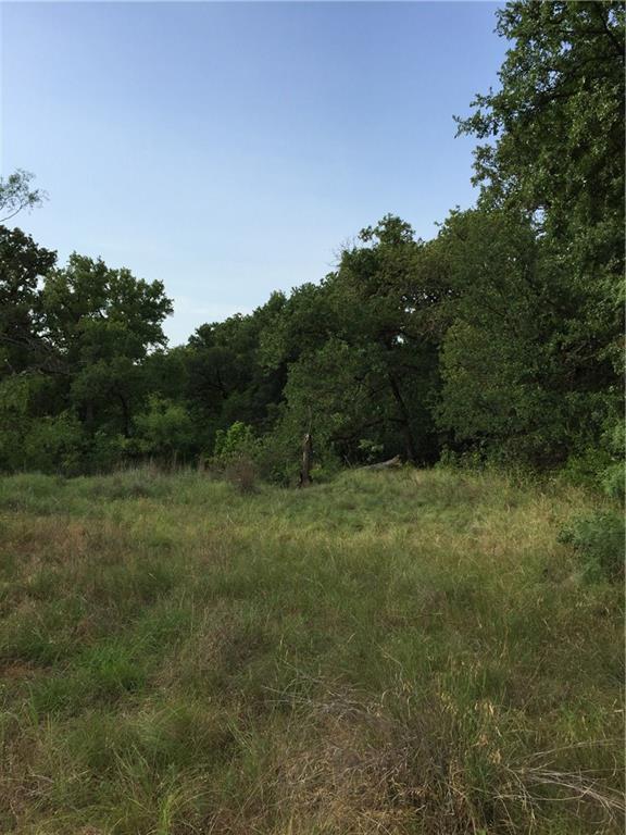 0000 Deadwood Road, Graham, TX 76450 (MLS #13870371) :: The Real Estate Station