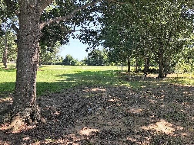 611 Hills Lane, Kemp, TX 75143 (MLS #13874547) :: Team Hodnett