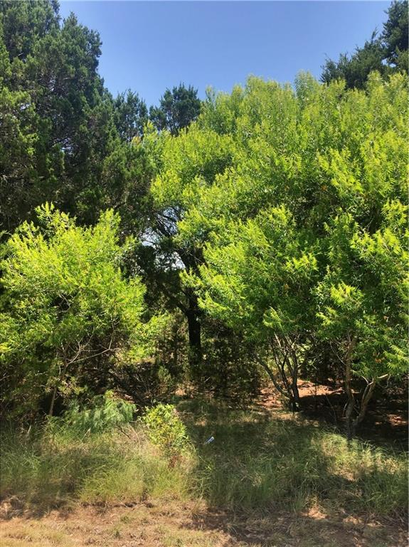 29032 Whisperwood Dr & Cedarcrest Drive, Whitney, TX 76692 (MLS #13875439) :: All Cities Realty