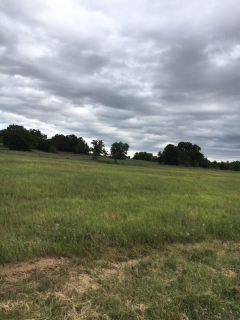 107 W Oak Tree Drive E, Poolville, TX 76487 (MLS #13876354) :: The Heyl Group at Keller Williams