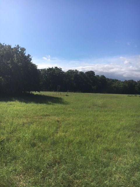 106 W Oak Tree Drive E, Poolville, TX 76487 (MLS #13876399) :: The Heyl Group at Keller Williams