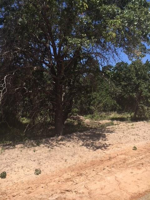 200 W Oak Tree Drive E, Poolville, TX 76487 (MLS #13877397) :: RE/MAX Town & Country
