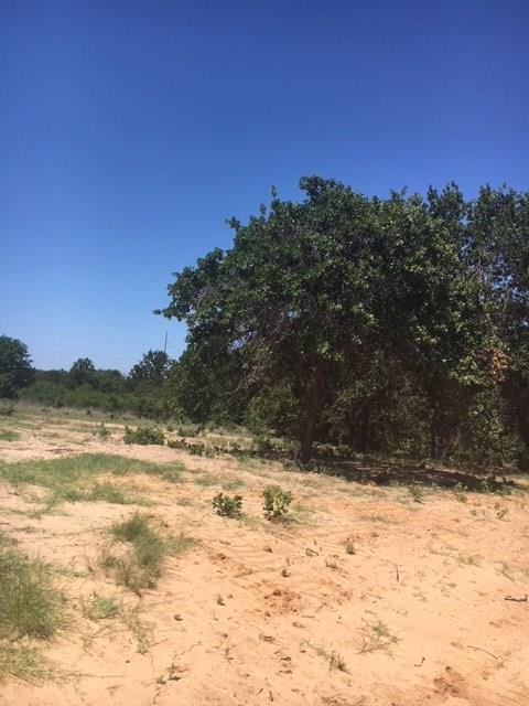 114 W Oak Tree Drive E, Poolville, TX 76487 (MLS #13877438) :: RE/MAX Town & Country