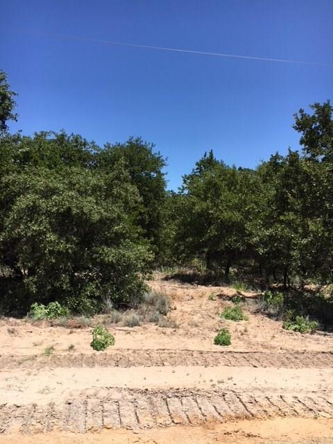 149 W Oak Tree Drive E, Poolville, TX 76487 (MLS #13878825) :: RE/MAX Town & Country