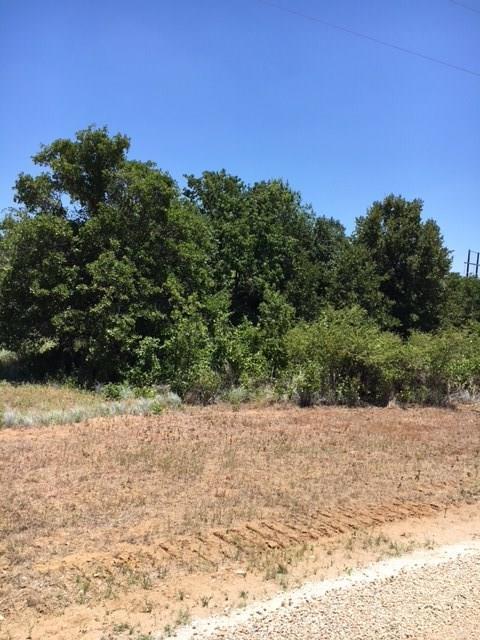 161 W Oak Tree Drive E, Poolville, TX 76487 (MLS #13878853) :: RE/MAX Town & Country