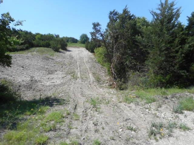 13.168 Acres, Weatherford, TX 76085 (MLS #13887786) :: Team Hodnett