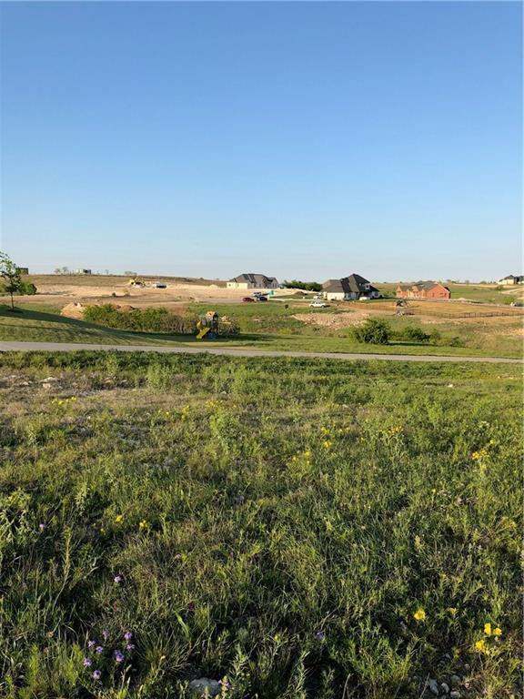 12216 Bella Dio Drive, Fort Worth, TX 76126 (MLS #13888533) :: Team Hodnett