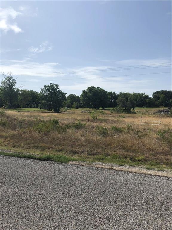 400 W Bluebonnet Drive, Granbury, TX 76048 (MLS #13892080) :: Potts Realty Group