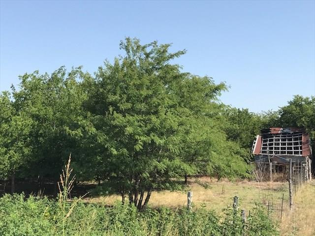 TBD County Road 1100, Blue Ridge, TX 75424 (MLS #13896087) :: RE/MAX Town & Country