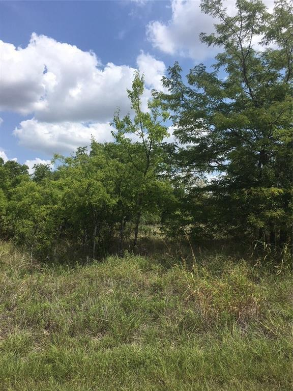 Lot 16 E Bay Drive, Bridgeport, TX 76426 (MLS #13916720) :: The Heyl Group at Keller Williams