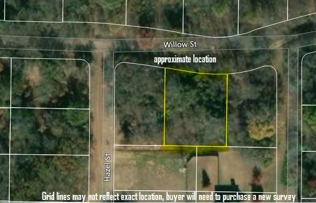 3005 Willow Street, Flower Mound, TX 75028 (MLS #13921389) :: The Rhodes Team