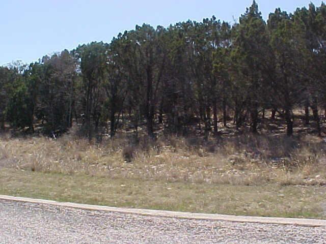 155 Jupiter Hills Drive, Possum Kingdom Lake, TX 76449 (MLS #13922407) :: The Chad Smith Team