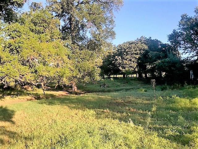 TBD County Road 214, Iredell, TX 76649 (MLS #13936931) :: North Texas Team | RE/MAX Advantage