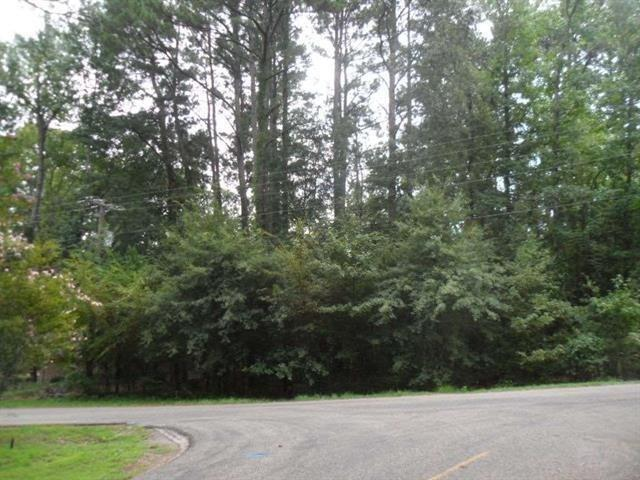 1650 Pineview Lane, Hideaway, TX 75771 (MLS #13938205) :: RE/MAX Landmark