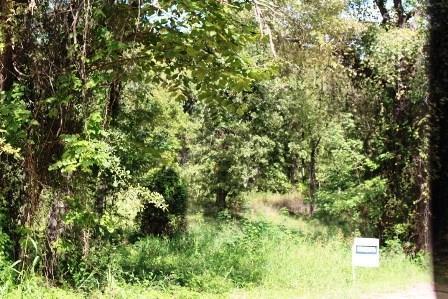 0 Calle Colleen, Gun Barrel City, TX 75156 (MLS #13947927) :: Robbins Real Estate Group