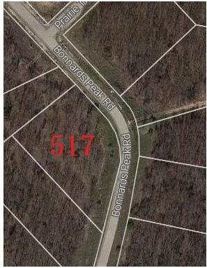 517 Bonnards Peak Road, Burleson, TX 76028 (MLS #13955058) :: The Mitchell Group