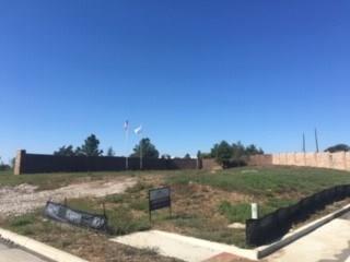 501 Llano Court, Keller, TX 76248 (MLS #13962072) :: Robbins Real Estate Group