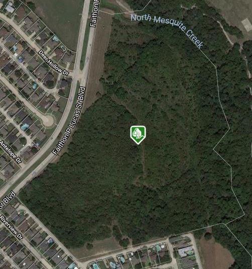 2000 Faithon P Lucas Sr Boulevard, Mesquite, TX 75181 (MLS #13967010) :: The Heyl Group at Keller Williams