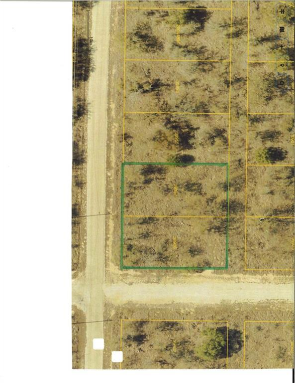 47, 48 Janda Lane, Brownwood, TX 76801 (MLS #13976446) :: The Kimberly Davis Group