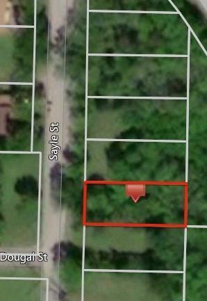 1613 Sayle Street, Greenville, TX 75401 (MLS #13977510) :: The Heyl Group at Keller Williams