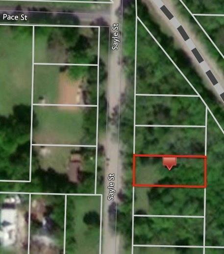 1609 Sayle Street, Greenville, TX 75401 (MLS #13977514) :: The Heyl Group at Keller Williams