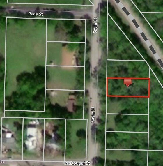 1607 Sayle Street, Greenville, TX 75401 (MLS #13977517) :: The Heyl Group at Keller Williams