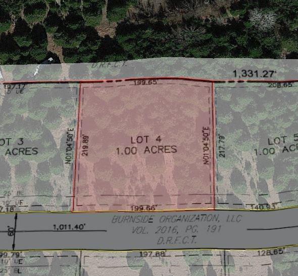 Lot 4 County Road 4920, Leonard, TX 75452 (MLS #13980154) :: The Heyl Group at Keller Williams