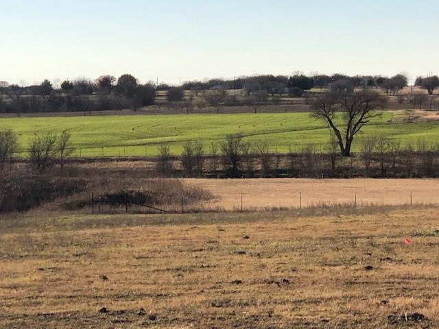 10200 Eakin Cemetery Road - Photo 1