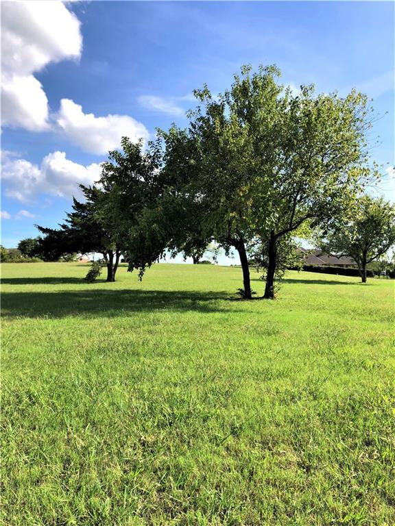 Lot 13 Woodland Court, Gainesville, TX 76240 (MLS #13987602) :: Kimberly Davis & Associates