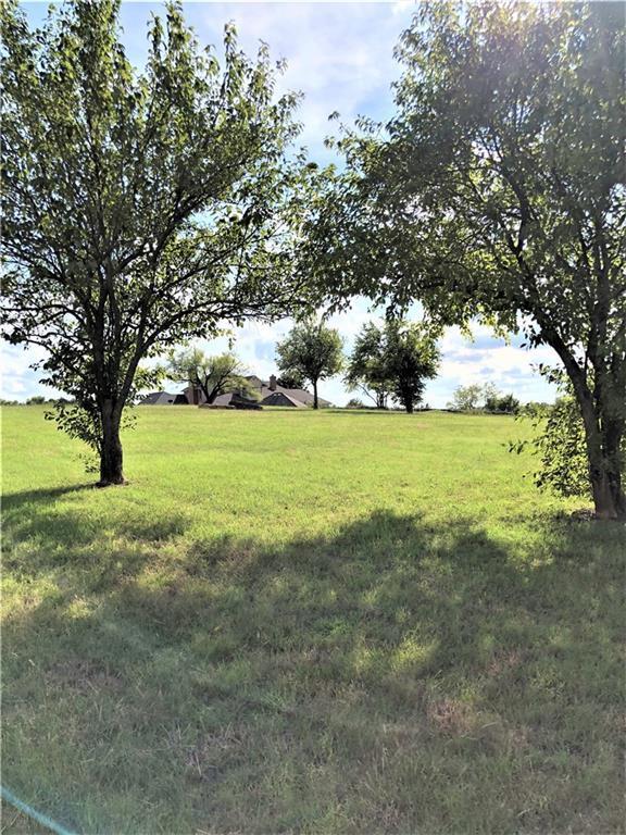 Lot 12 Woodland Court, Gainesville, TX 76240 (MLS #13987607) :: Kimberly Davis & Associates