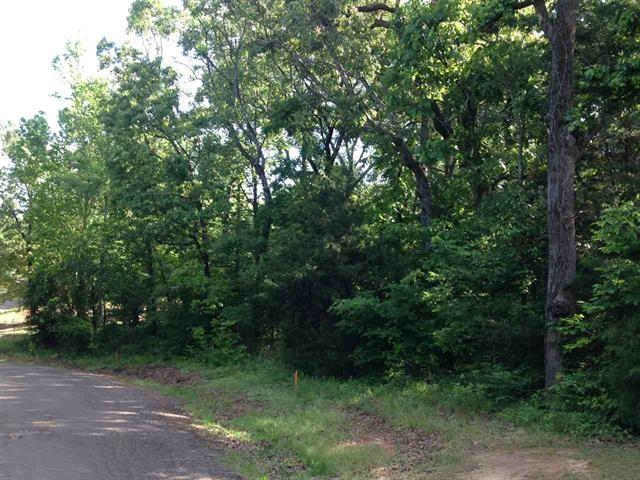 00 Cr 1452, Quitman, TX 75783 (MLS #13991080) :: The Chad Smith Team