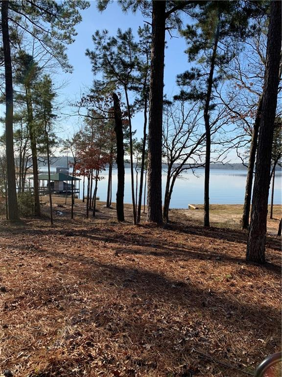 Lot 12 Caddo Point Trail, Scroggins, TX 75480 (MLS #14000358) :: The Heyl Group at Keller Williams