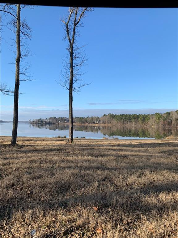 Lot 9 Caddo Point Trail, Scroggins, TX 75480 (MLS #14001864) :: The Heyl Group at Keller Williams