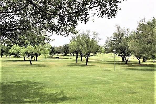 27088 Meadowmore Drive, Whitney, TX 76692 (MLS #14004456) :: The Heyl Group at Keller Williams