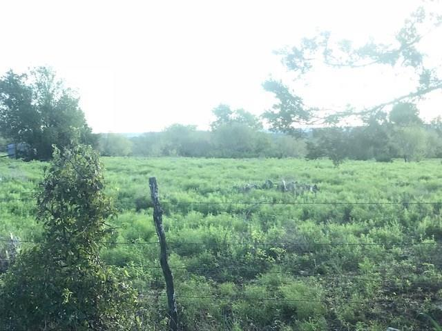 TBD Cr 216A, Hico, TX 76457 (MLS #14007108) :: The Real Estate Station